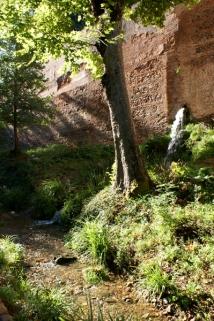 Granada_9