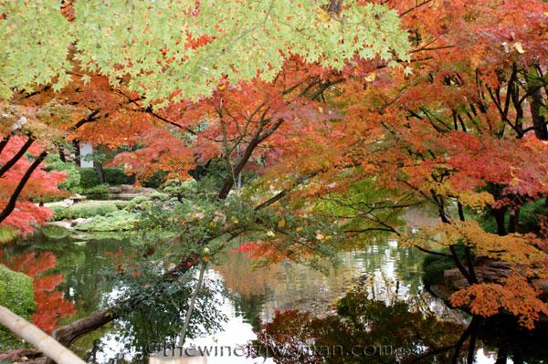 Japanese-Garden011