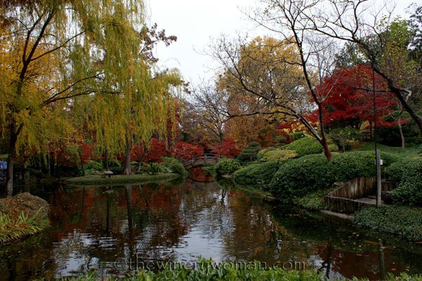 Japanese-Garden055