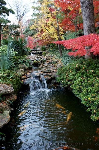 Japanese-Garden056