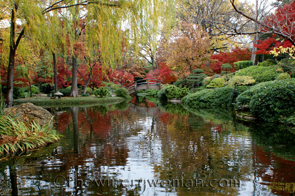 Japanese-Garden057