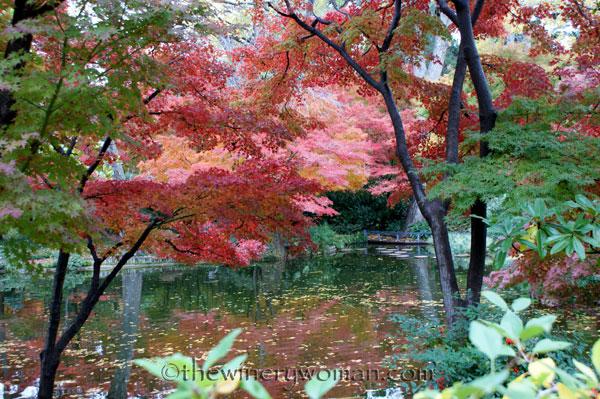 Japanese-Garden120