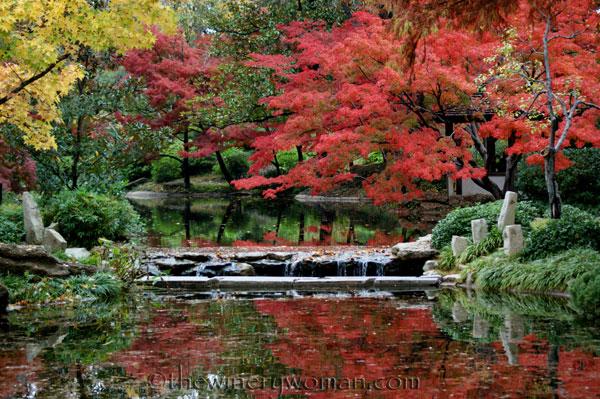 Japanese-Garden143