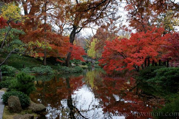 Japanese-Garden159