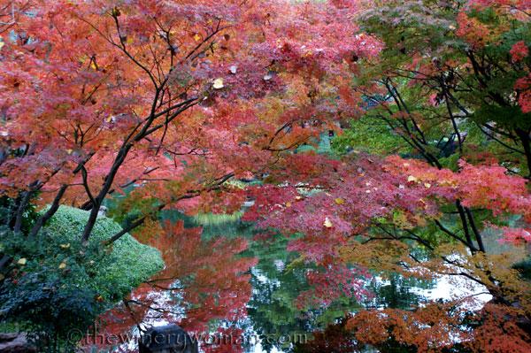 Japanese-Garden254
