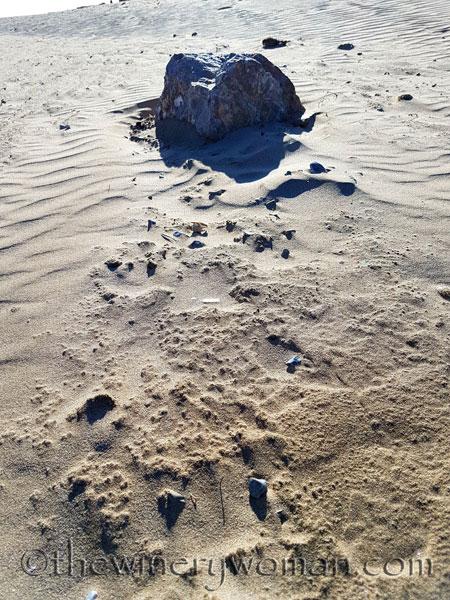 Beach_Sitges3_2.21.18_TWW