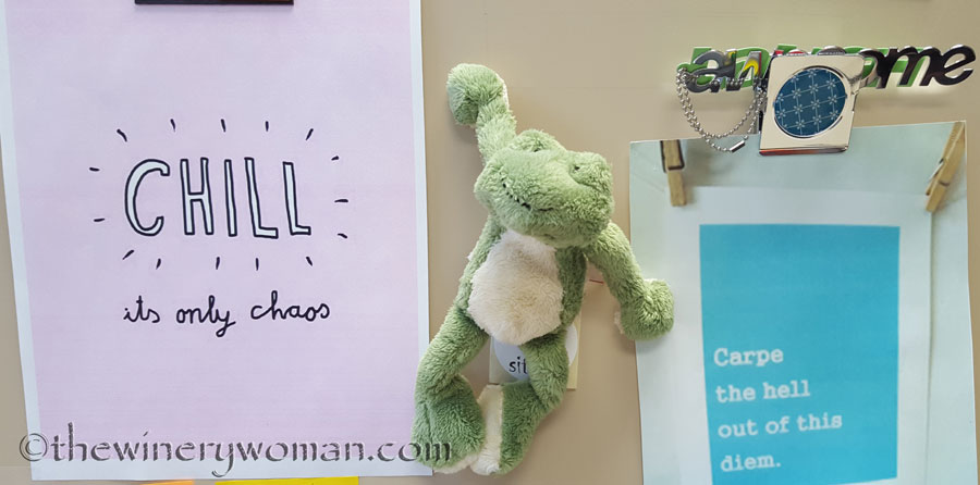 Friday-Frog-wisdom_TWW
