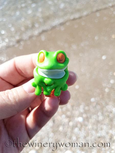 Froggie-on-the-beach_TWW