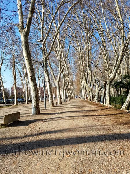 Girona31_2.24.18_TWW