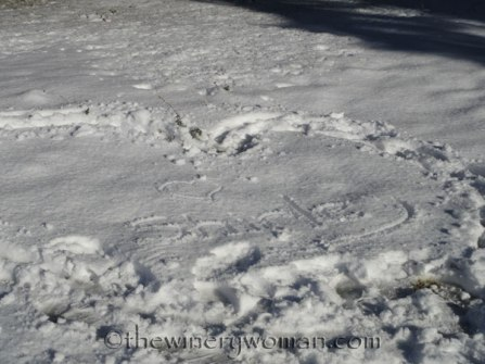 Shirley-in-snow_TWW