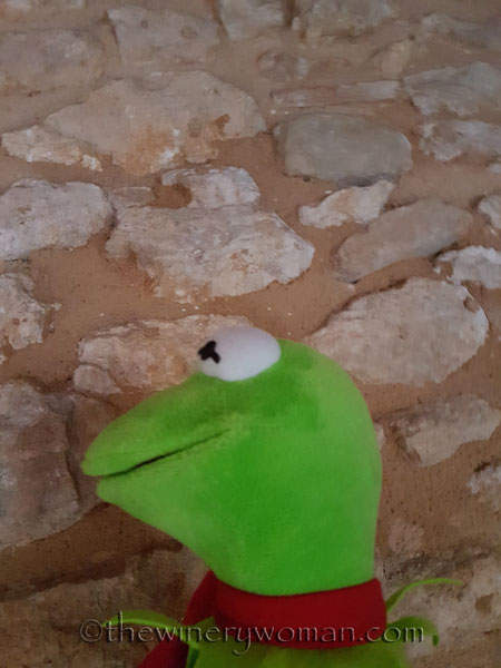 Wall-frog-with-Kermit_TWW