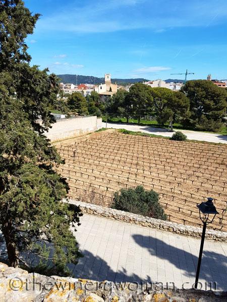 Castell-de-Ribes20_3.27.18_TWW