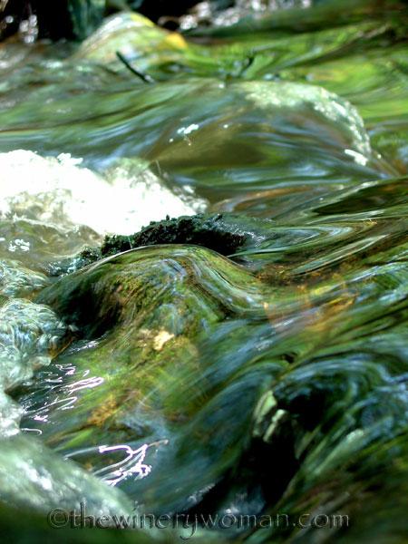 BeaverCreek_Cobbtown_GA_3_2007_TWW
