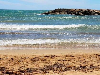 Beach_time3_6.11.18_TWW