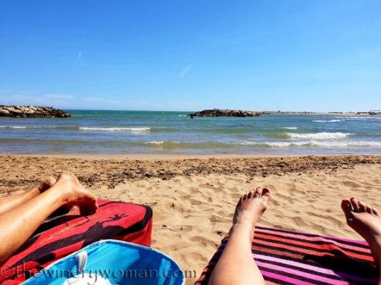 Beach_time7_6.11.18_TWW
