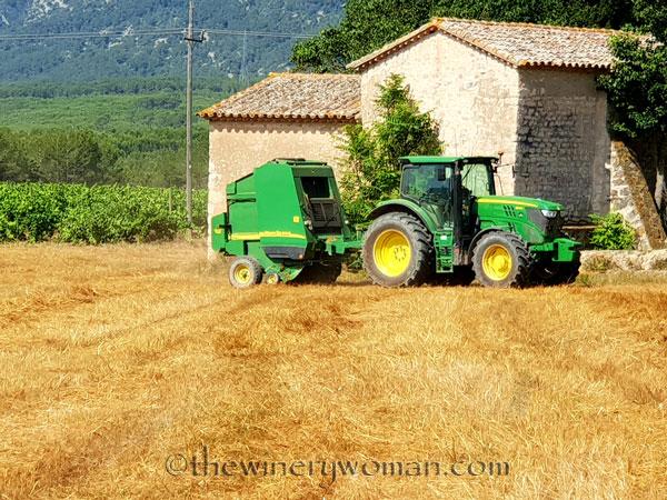 Hay_Harvest7_6.30.18_TWW