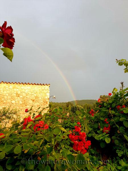 Rainbow4_6.3.18_TWW