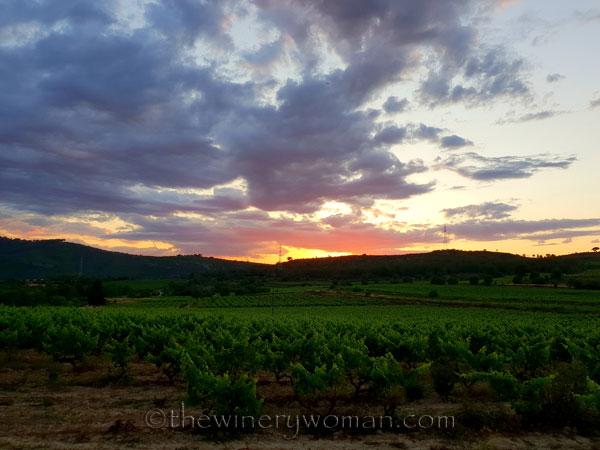 Sunset_glow2_6.13.18_TWW