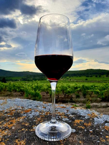 Wine_in_Vineyard2_6.12.18_TWW