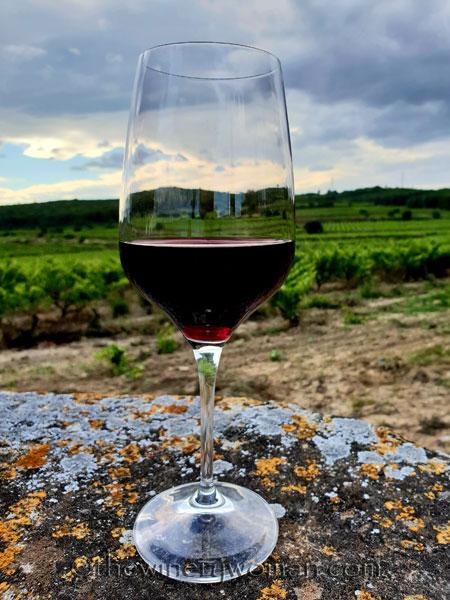 Wine_in_Vineyard_6.12.18_TWW