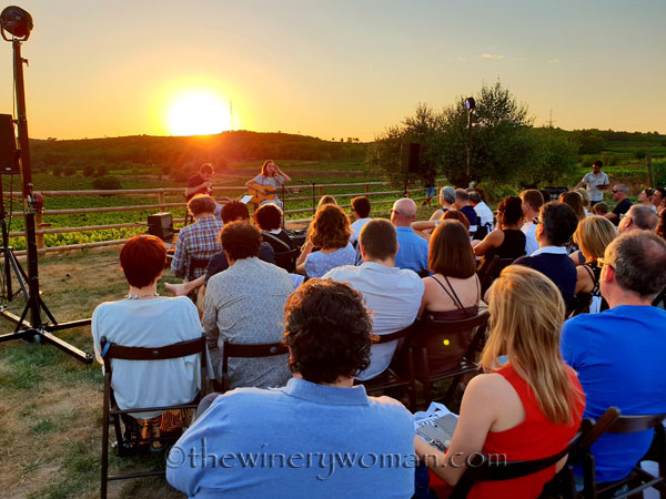 Concert_in_the_vineyard14_7.14.18_TWW