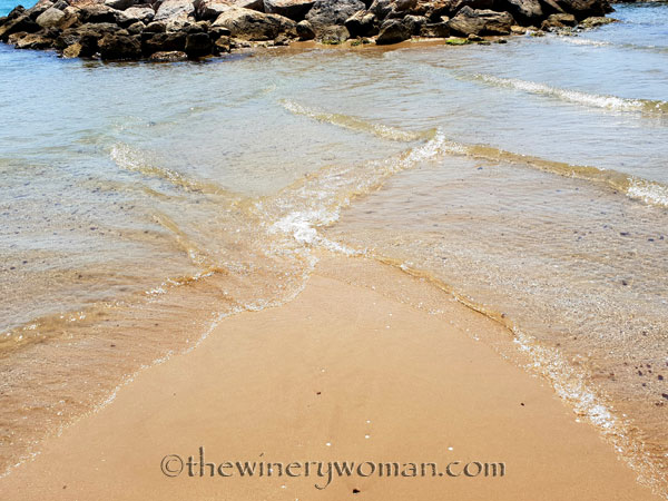 Sausalito-Beach4_7.27.18_TWW