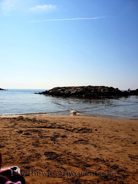 Beach3_8.23.18_TWW