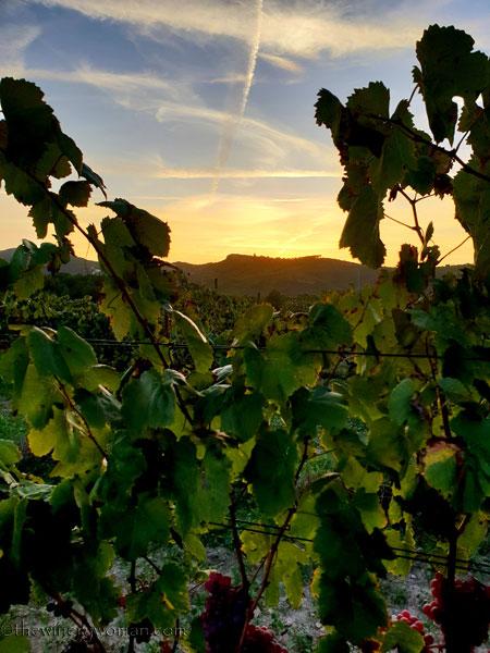 Autumn_Sunset7_9.27.18_TWW