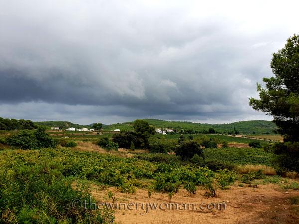 Clouds_Viladellops_9.3.18_TWW