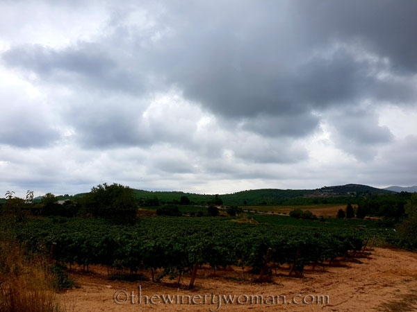 Harvest26_9.3.18_TWW