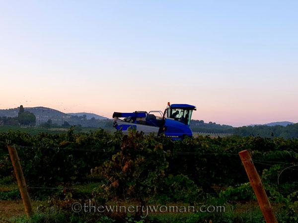 Harvest_by_machine17_9.20.18_TWW
