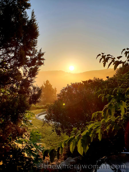 Sunrise_Viladellops6_9.14.18_TWW