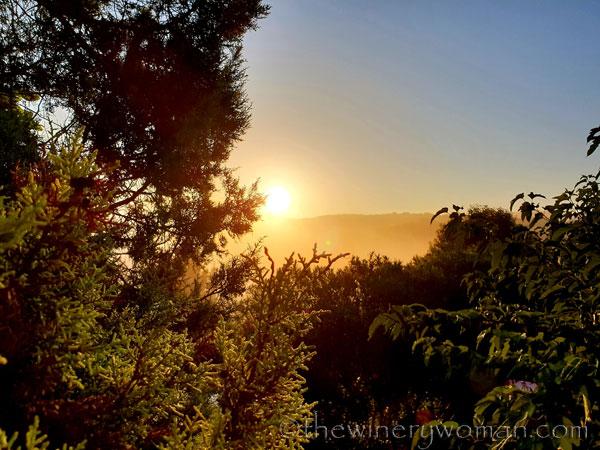Sunrise_Viladellops7_9.14.18_TWW