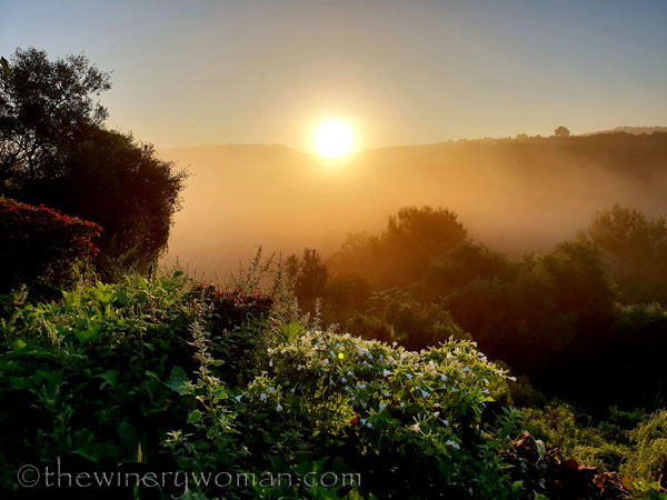 Sunrise_Viladellops8_9.14.18_TWW