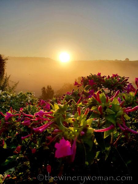 Sunrise_Viladellops9_9.14.18_TWW