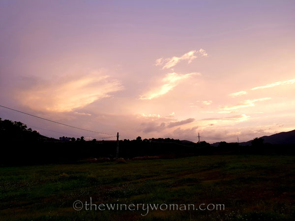 Autumn_Vineyard_Sunset5_10.9.18_TWW