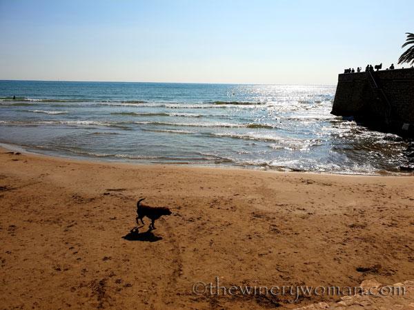 Beach2_10.22.18_TWW