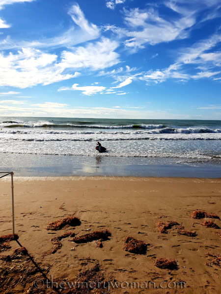 Beach_Sitges13_10.15.18_TWW