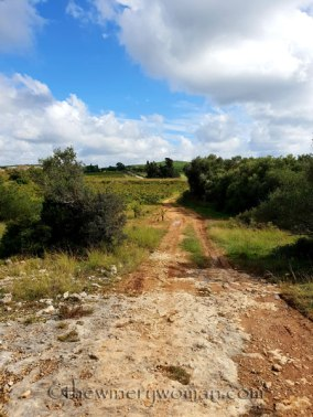Trail_views2_10.14.18_TWW