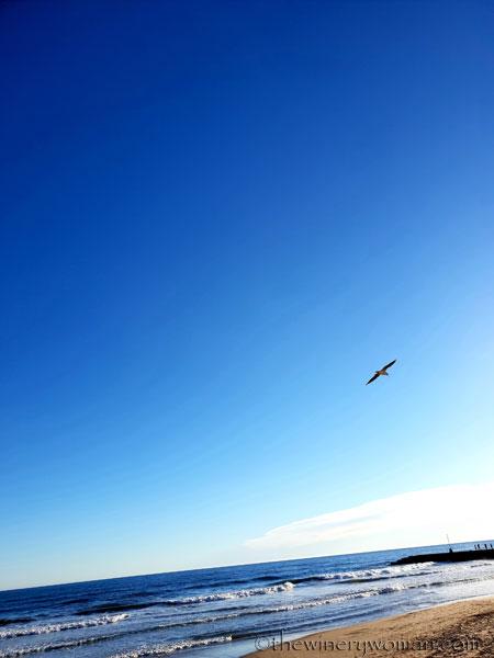 beach_sitges2_1.25.19_tww