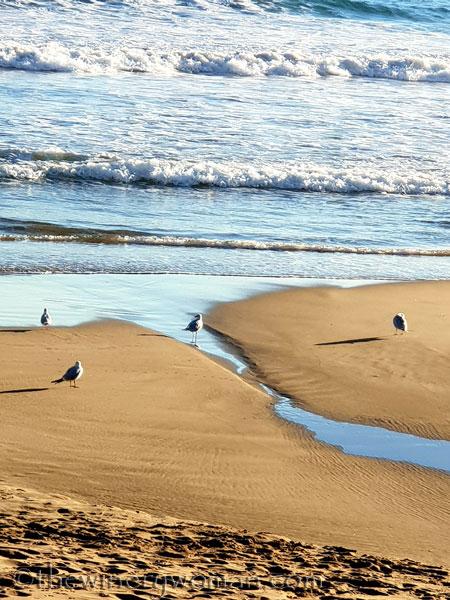 beach_sitges5_1.25.19_tww