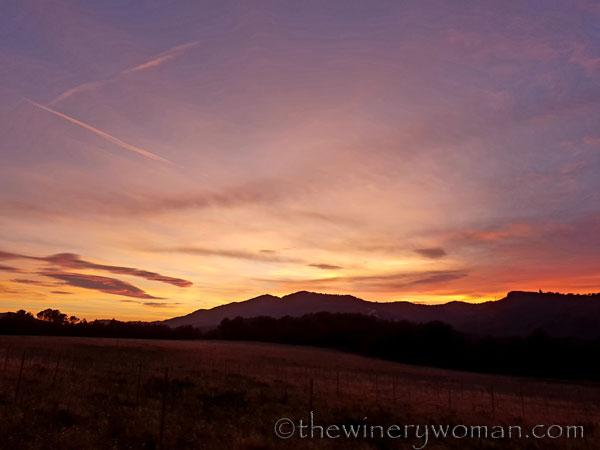 sunset_in_the_vineyard15_1.8.19_tww