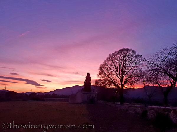sunset_in_the_vineyard17_1.8.19_tww