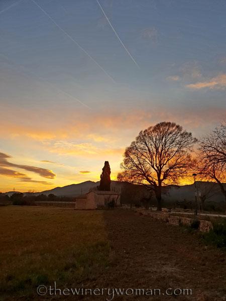 sunset_in_the_vineyard5_1.8.19_tww