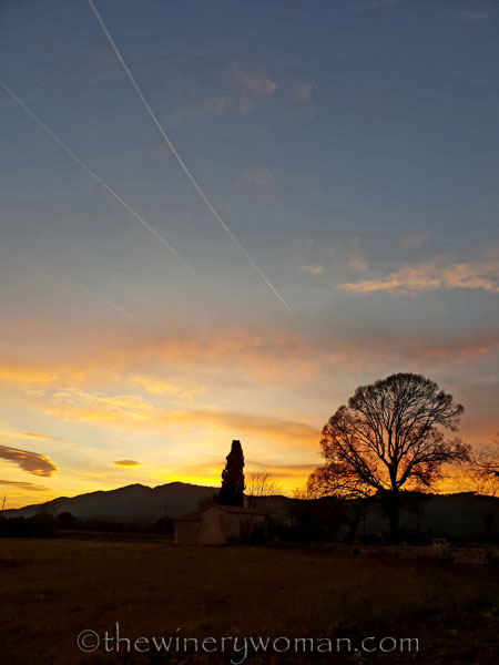 sunset_in_the_vineyard7_1.8.19_tww