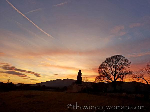 sunset_in_the_vineyard8_1.8.19_tww