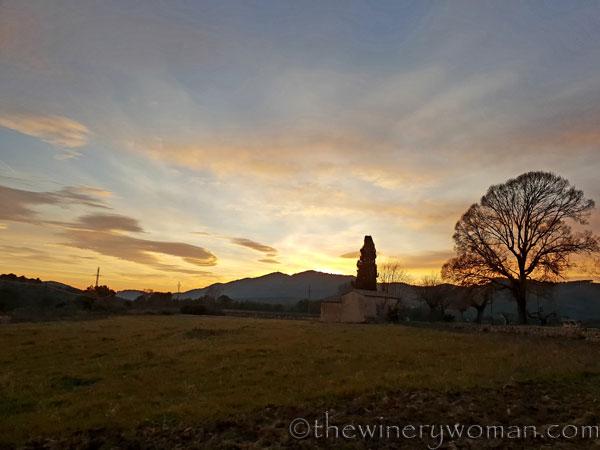 sunset_in_the_vineyard_1.8.19_tww