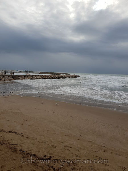 Beach_Sitges4_2.1.19_TWW