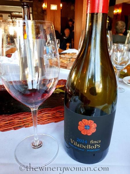 Finca_Viladellops_Wine_Les_Piques_2.9.19_TWW