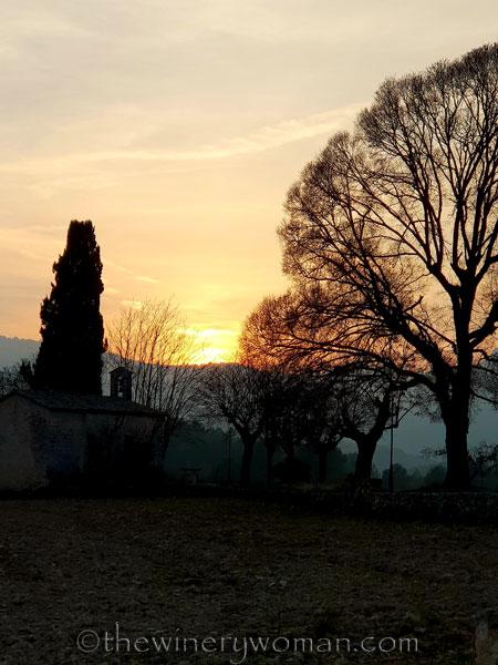 Sunset_Vineyard3_2.9.19_TWW